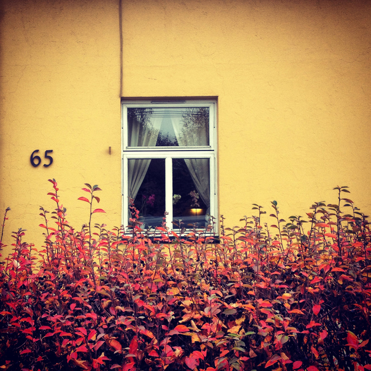 høsten1